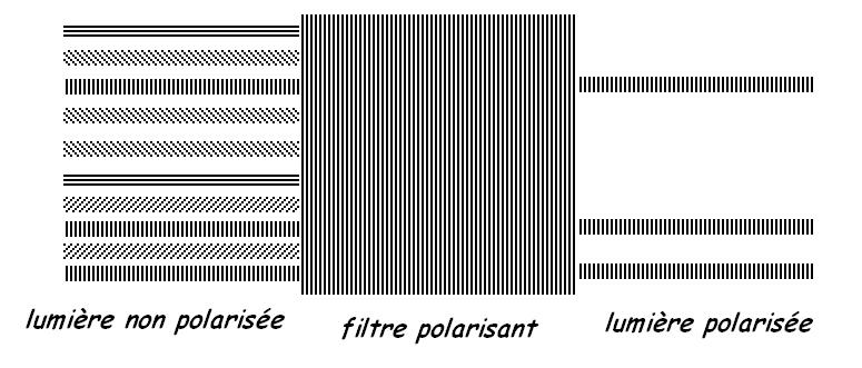 7159eab9b0f784 Les filtres polarisants ne sont en aucun cas rayés, ce sont le plus souvent  des plaques translucides).